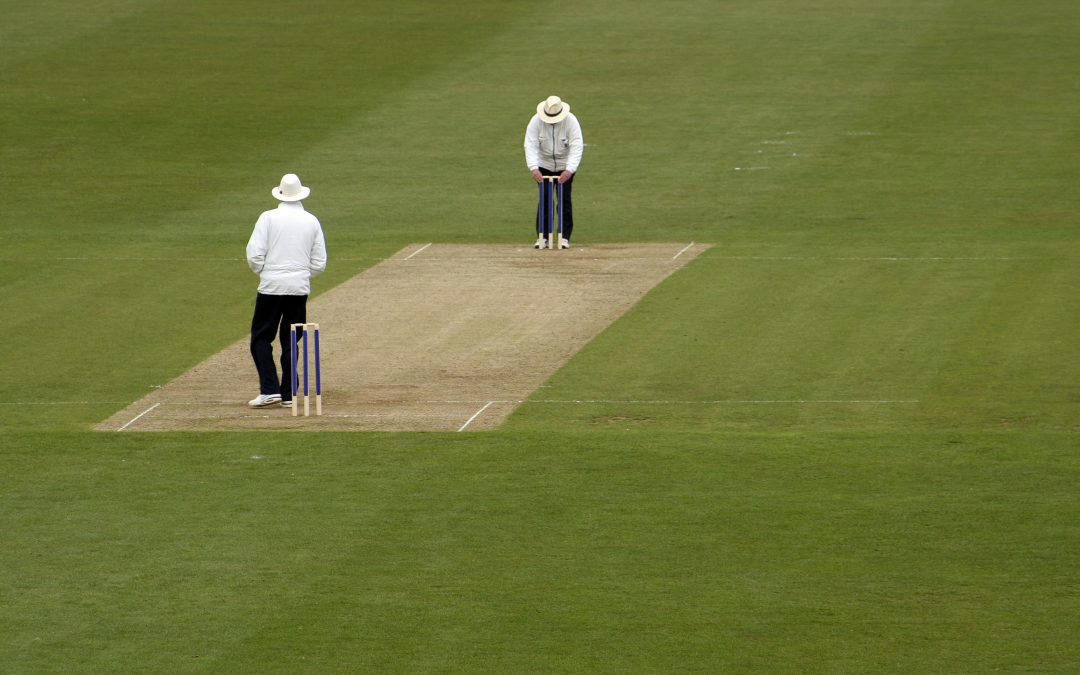 Umpires sign up to play-cricket